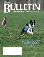 BCOA Bulletin July-August-September 2011 - the Basenji Club of ...