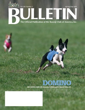 BCOA Bulletin July-August-September 2011 - the Basenji Club of ...