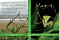 Mantids of the Euro-Mediterranean Area - WBA - World Biodiversity ...