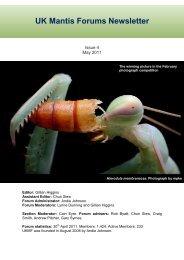 UK mantis forums newsletter