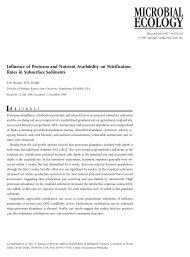 Influence of Protozoa and Nutrient Availability on Nitrification Rates ...