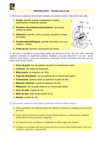 MICROSCOPÍA – TEORÍA CELULAR 1.- Pon nome as partes do ...