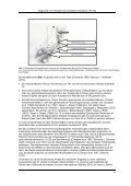 Leitlinie: Diagnostik und Therapie des ... - AWMF - Seite 6