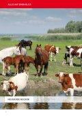stall- und Weidetechnik 2012 - Großewinkelmann - Seite 4