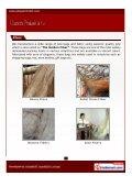 Download PDF - Chandra Prakash & Co. - Page 3