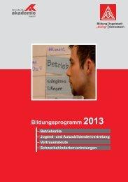 Bildungsprogramm Schwaben 2013 - IG Metall Ingolstadt