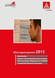 Bildungsprogramm_Vst_Landshut_2013 - IG Metall Landshut