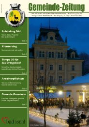 Dezember 2011 - Bad Ischl