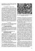 Gefügekundliehe Studien in alpinen Salzlagern - Seite 5