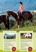 Auf ins Pferdeland! - Seite 5