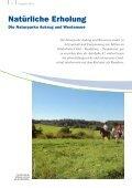 GGV NOK 2013.pdf, Seiten 15-29 - Tourist-Information Nord-Ostsee ... - Seite 6