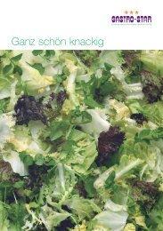 Ganz schciörw knackig - Gastro Star AG
