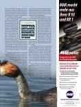 Prachtvoller Fischräuber - Seite 2