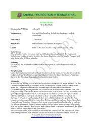 Sclater-Hokko - Akademie für Tierschutz- und Wildtierforschung