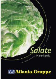 "1x1-Warenkunde ""Salate"" - khd-Blog"