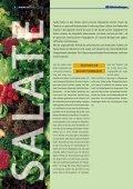 """1x1-Warenkunde """"Salate"""" - khd-Blog - Seite 2"""