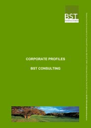 CORPORATE PROFILES BST CONSULTING