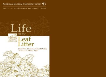 Life In The Leaf Litter - American Museum of Natural History