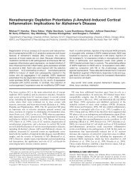Noradrenergic Depletion Potentiates ك-Amyloid-Induced Cortical ...