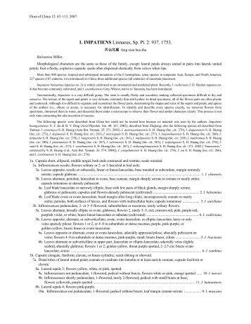 1. IMPATIENS Linnaeus, Sp. Pl. 2: 937. 1753.