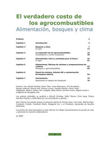 El verdadero costo de los agrocombustibles - Critical Information ...