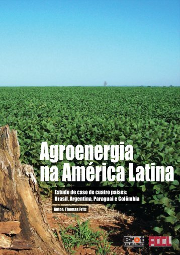Estudo de caso de cuatro países: Brasil, Argentina, Paraguai ... - FDCL