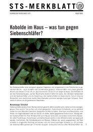 was tun gegen Siebenschläfer? - Schweizer Tierschutz STS