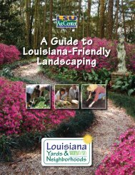 A Guide to Louisiana-Friendly Landscaping - Southern Regional ...