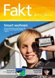 Fakt 04/2012 - Städtische Werke AG
