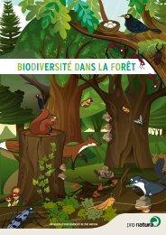BIODIVERSITÉ DANS LA FORÊT - Pro Natura