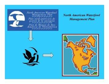 North American Waterfowl North American Waterfowl Management ...