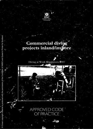 Commercial diving projects inland/inshore - Health and Safety ...