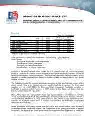INFORMATION TECHNOLOGY SERVICES (CSV) - Export.gov