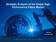 Strategic Analysis of the Global High Performance Fillers ... - Plasticker