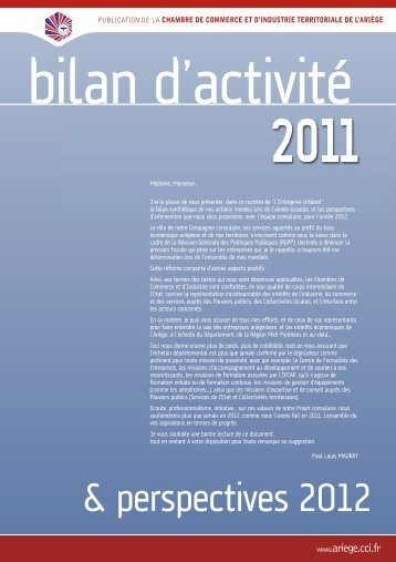 Le bilan d'activité Grand Public - C.C.I. de