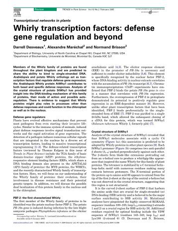 Whirly transcription factors: defense gene regulation and beyond