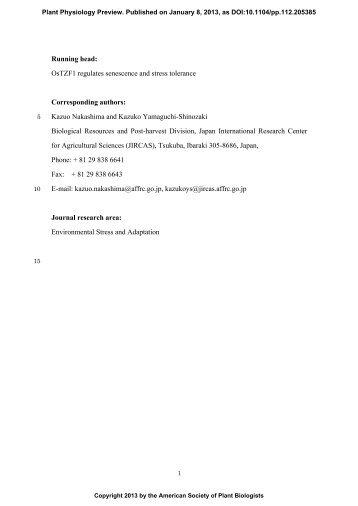 OsTZF1 121130b - Plant Physiology