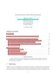 Hendrik van Hees, Invariantentheoretische Hydrodynamik - Theory