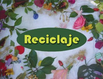 Reciclaje web (PDF) - Pura Vida