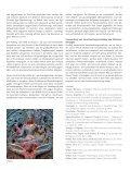 Irrtümer, Fallstricke und Gefahren - Seite 4