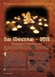 Das Medizinrad - 2012 - Synergia Verlag
