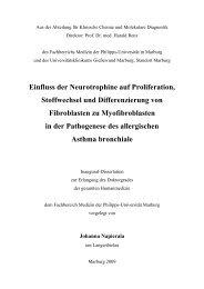Einfluss der Neurotrophine auf Proliferation, Stoffwechsel und ...