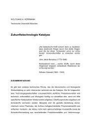 Zukunftstechnologie Katalyse - Lehrstuhl für Anorganische Chemie