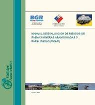 Manual de Evaluación de Riesgos de Faenas Mineras - Sernageomin