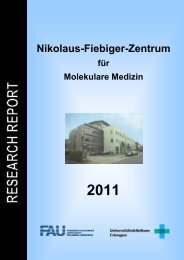 Research Report - Nikolaus-Fiebiger-Zentrum für Molekulare Medizin