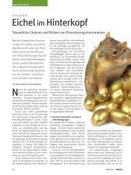 Eichelim Hinterkopf - Deutsche Beteiligungs AG
