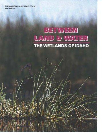 The Wetlands of Idaho - Idaho Fish and Game