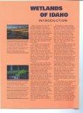 The Wetlands of Idaho - Idaho Fish and Game - Page 2