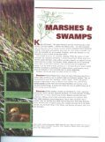 The Wetlands of Idaho - Idaho Fish and Game - Page 5