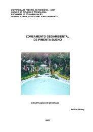 ZONEAMENTO GEOAMBIENTAL DE PIMENTA BUENO - CPRM
